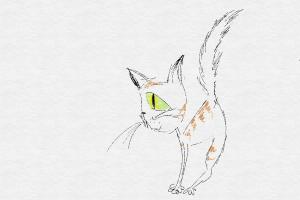 CattButt
